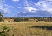 Turkey Ridge land for sale (1)