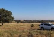 Turkey Ridge land for sale (4)