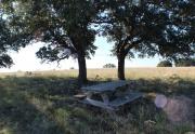 Turkey Ridge land for sale (6)