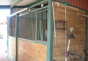 black horse stall