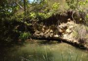 fav-vert-above-cenote1