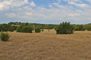 11 acres of land for sale South of Fredericksburg in Grandview Acres