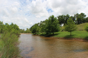 15 acres for sale in Triple creek