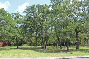 114 Tanglewood Fredericksburg TX lot homesite for sale