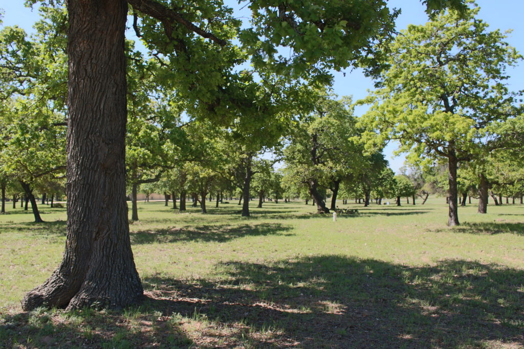 283 Lakewood Lane Fredericksburg TX Land for sale Picture Gallery