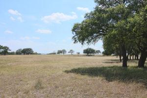 10 acres Morris Tivydale Rd Fredericksburg TX