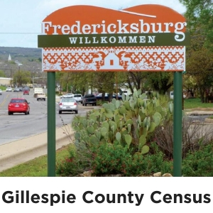 Gillespie County Census
