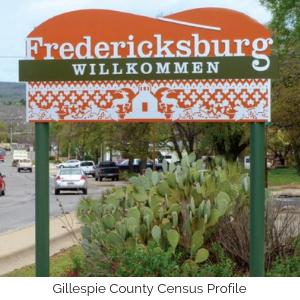 Gillespie County Census Profile
