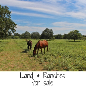Land & Ranches for sale