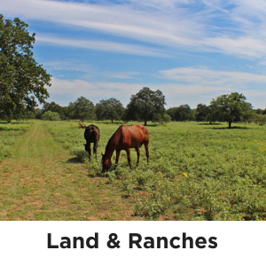 Land & Ranches