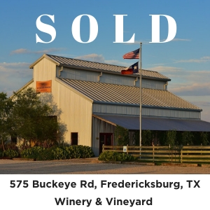 Winery Vineyard for sale Fredericksburg TX