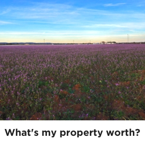What's my property worth?