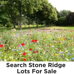 Stone Ridge subdivision Fredericksburg TX