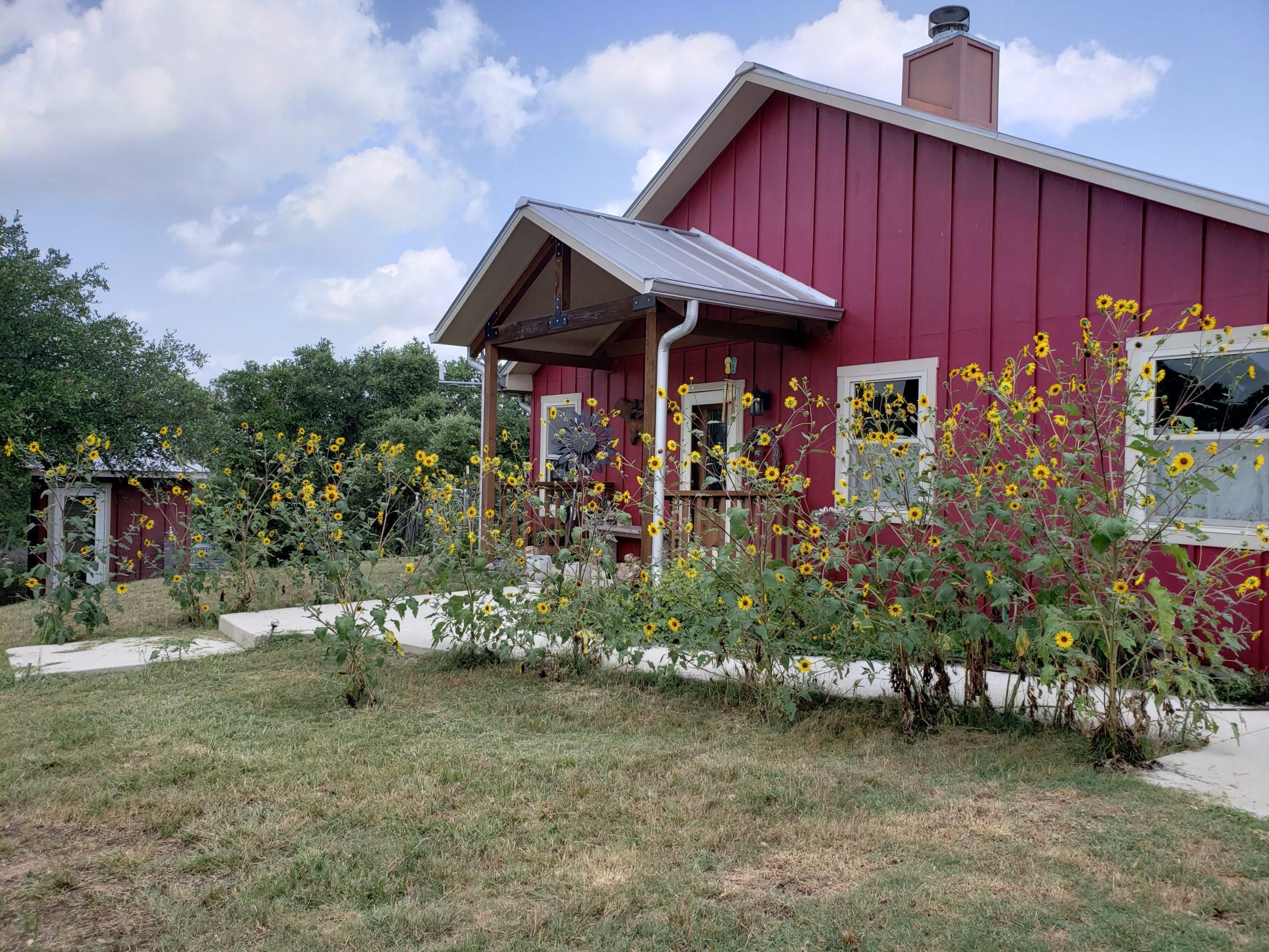 8605 RR 1323 Fredericksburg TX Home For Sale